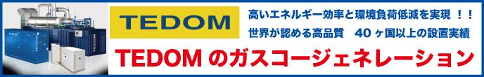 TEDOM ガスコージェネレーション